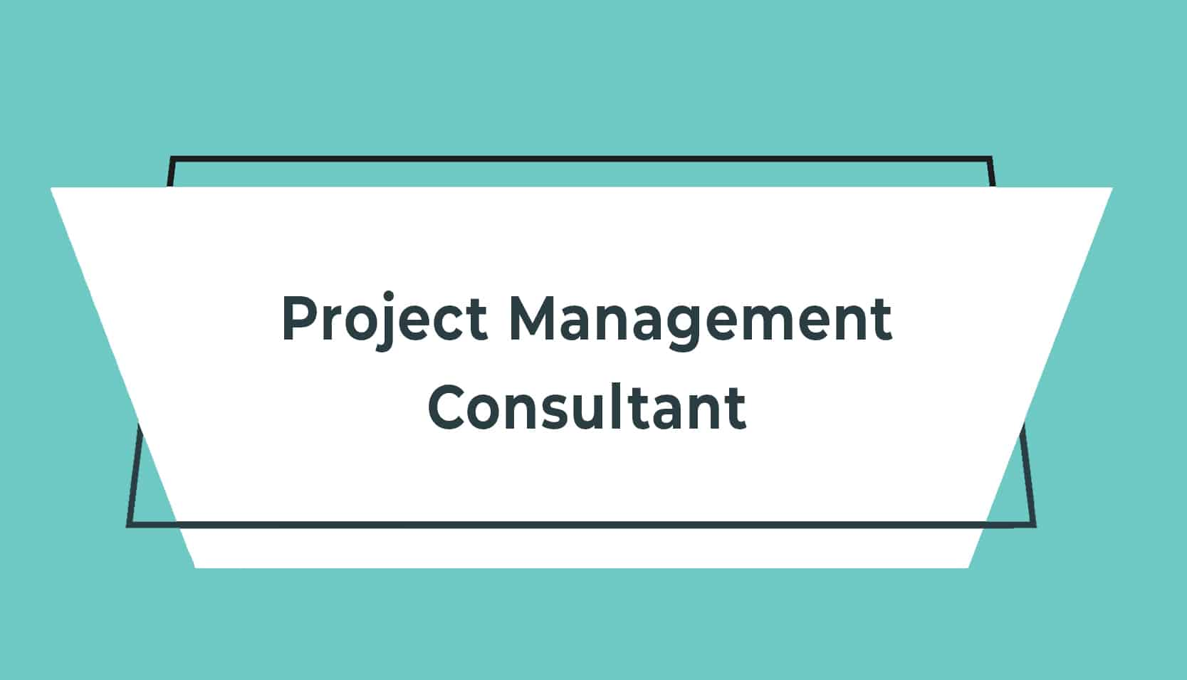 JD adverts V2 Project Management Consultant